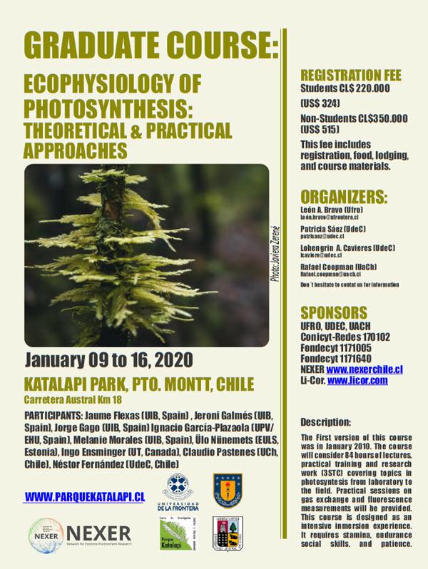 curso ecofisiologia de la fotosintesis
