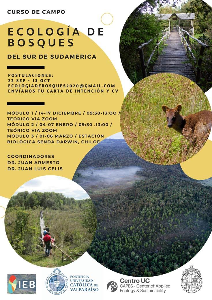 curso ecologia de los bosques