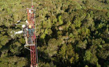 torre medidora carbono